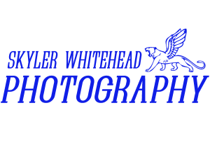 Editorial / Beauty / Creative Portrait Photography